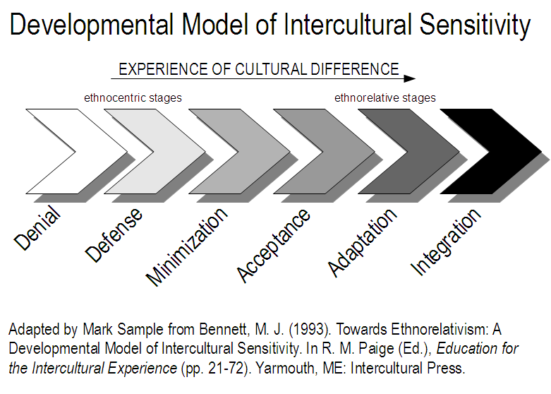 Incontext Beyond Ethnocentrism 3 Integrating Cultural Difference