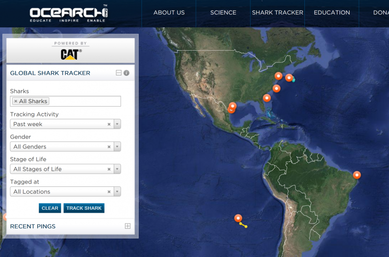 OCEARCH Tracking Map (screenshot)